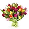 Envía flores a domicilio_logo