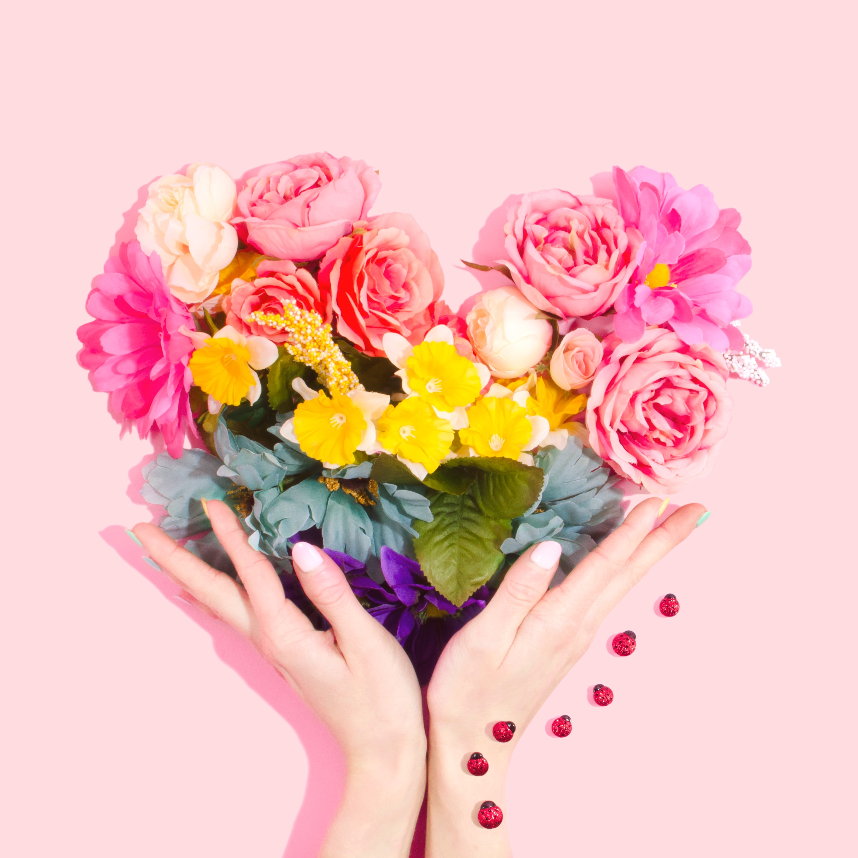 Regala flores este San Valentín con Colvin